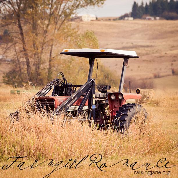 farm-romance-0377