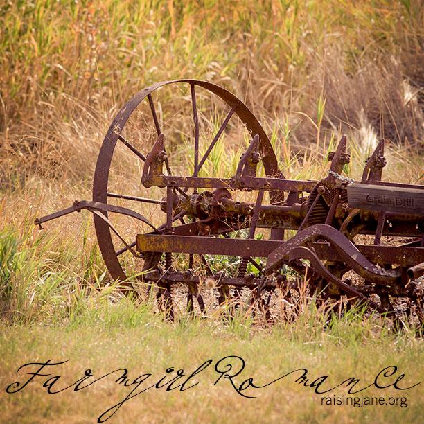 farm-romance-0384