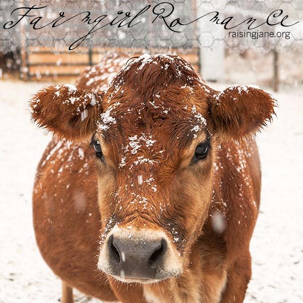 farm-romance_1911