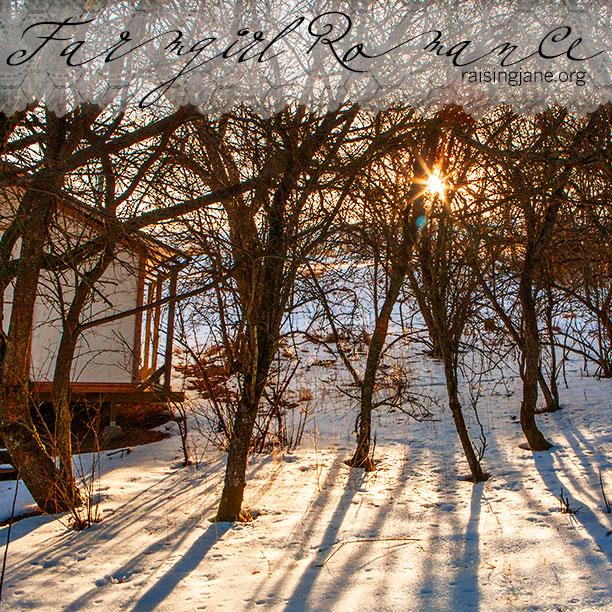 farm-romance_2385