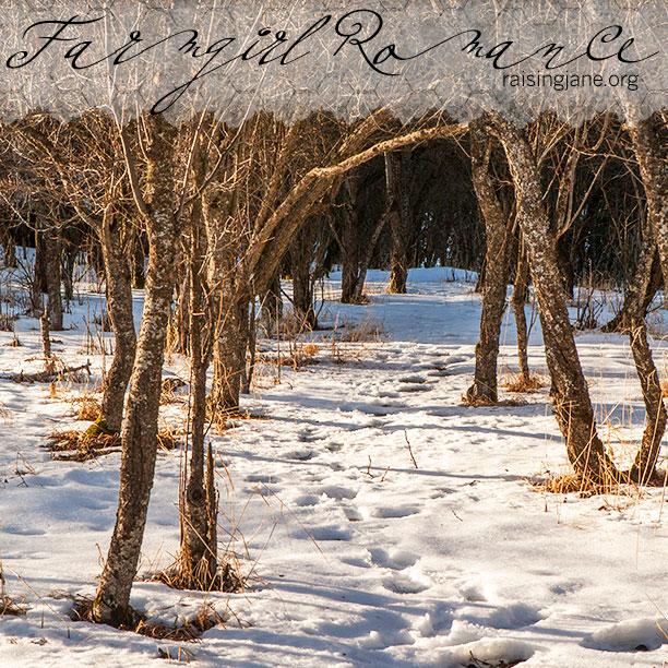 farm-romance_2393