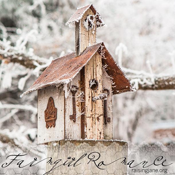 farm-romance-4655