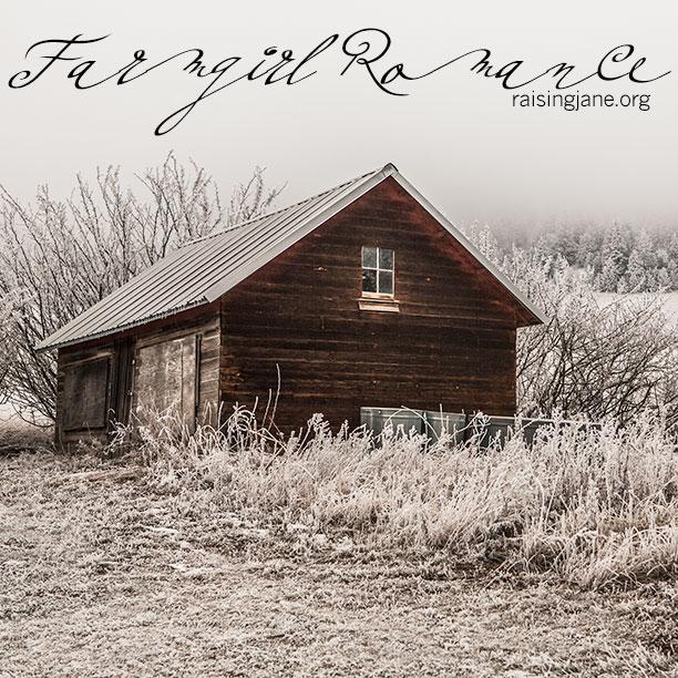 farm-romance-4712