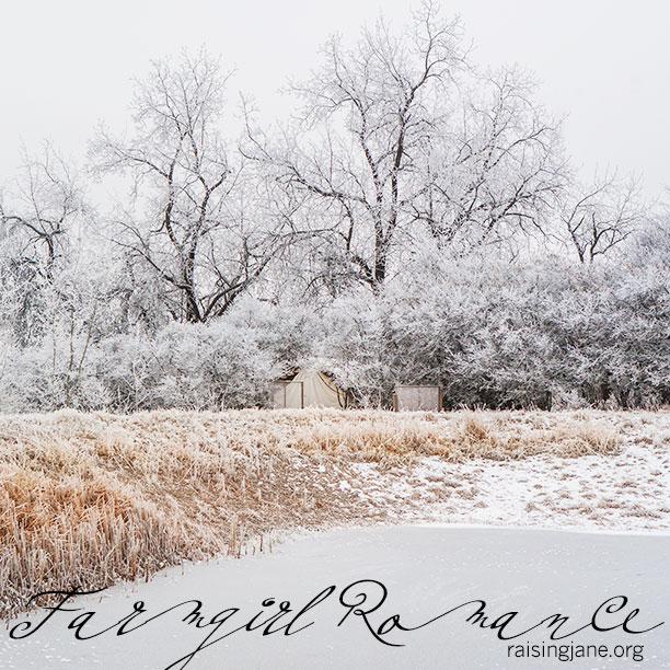 farm-romance-4724
