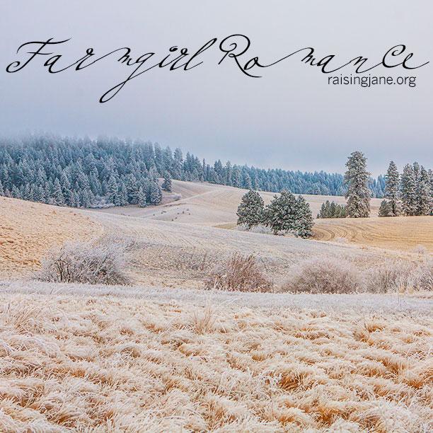 farm-romance-4731