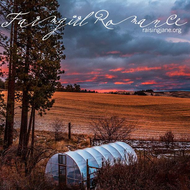 farm-romance-5019