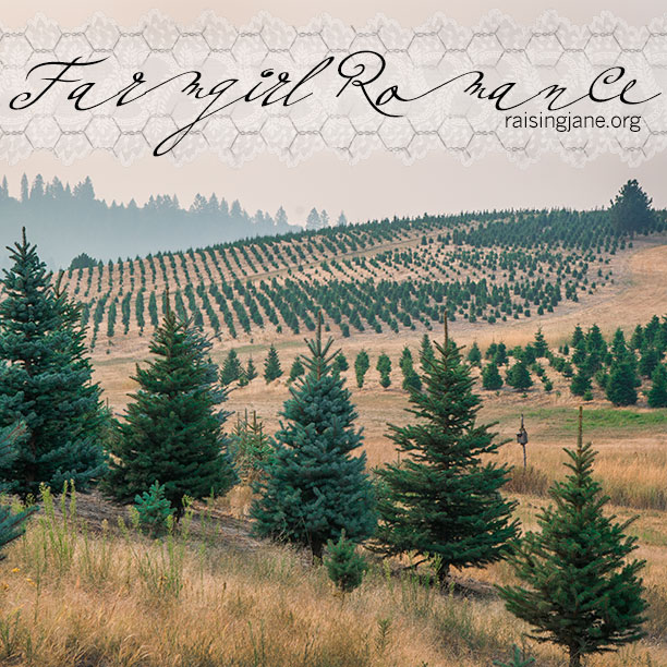 farm-romance-6900