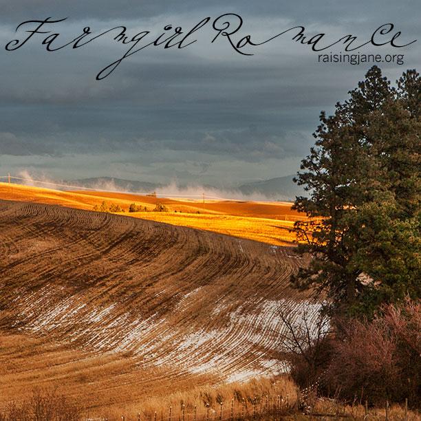 farm-romance_4994