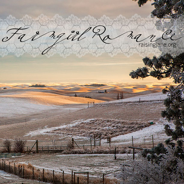 farm-romance_4802