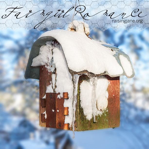 farm-romance_5671