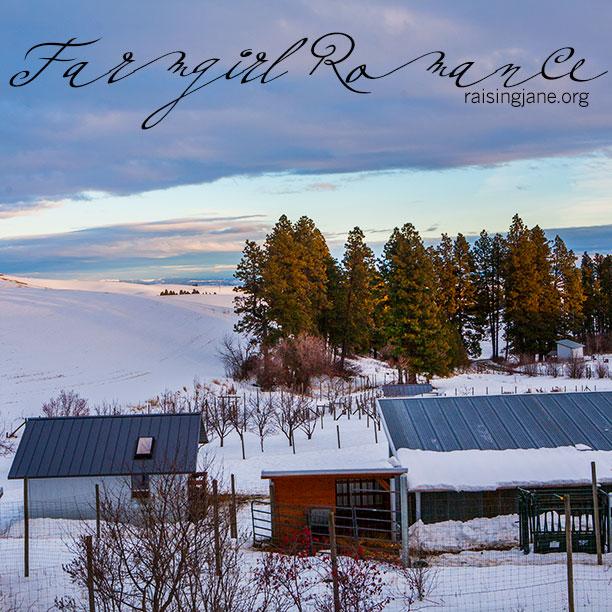 farm-romance_6387