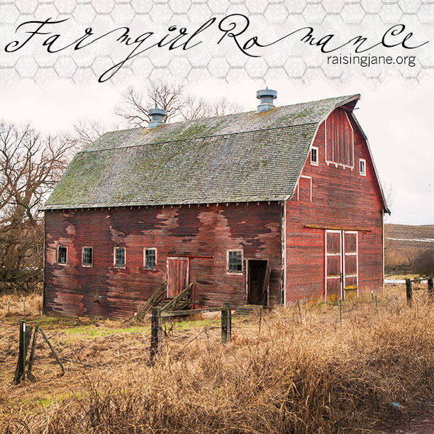 farm-romance_7417