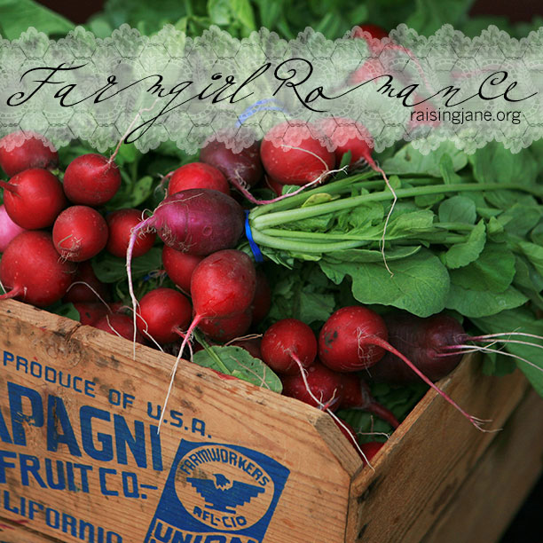 farm_romance-radishes-2
