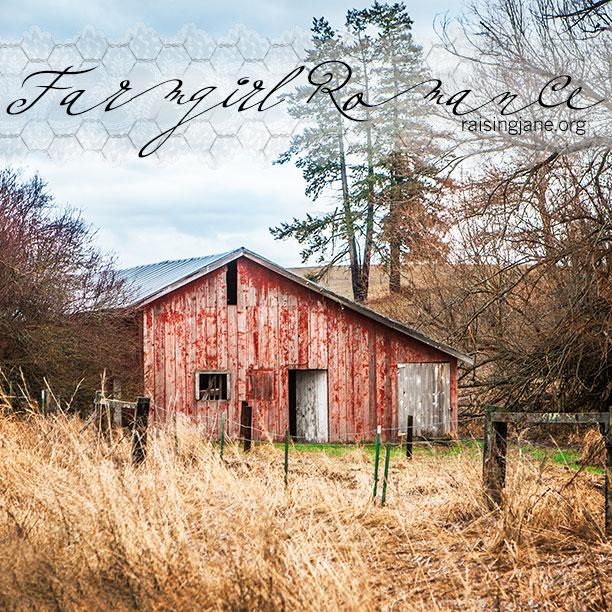 farm-romance-7426
