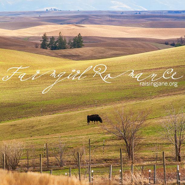 farm-romance_8620