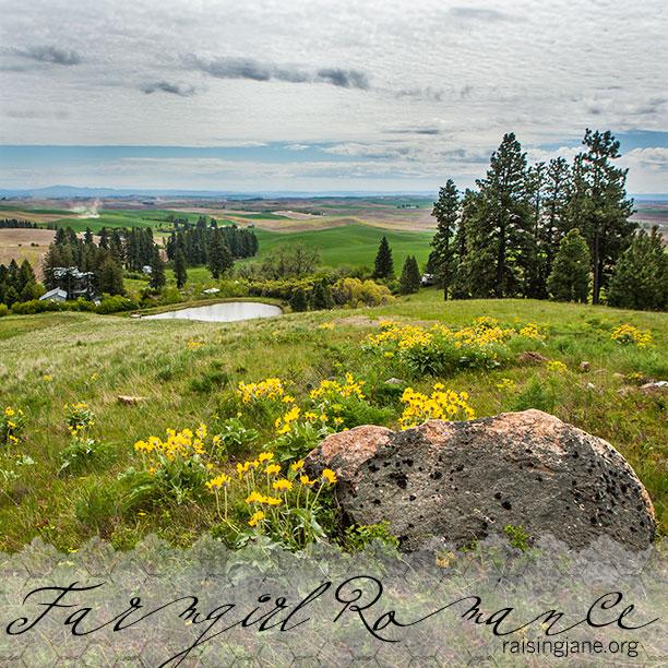 farm-romance-8824