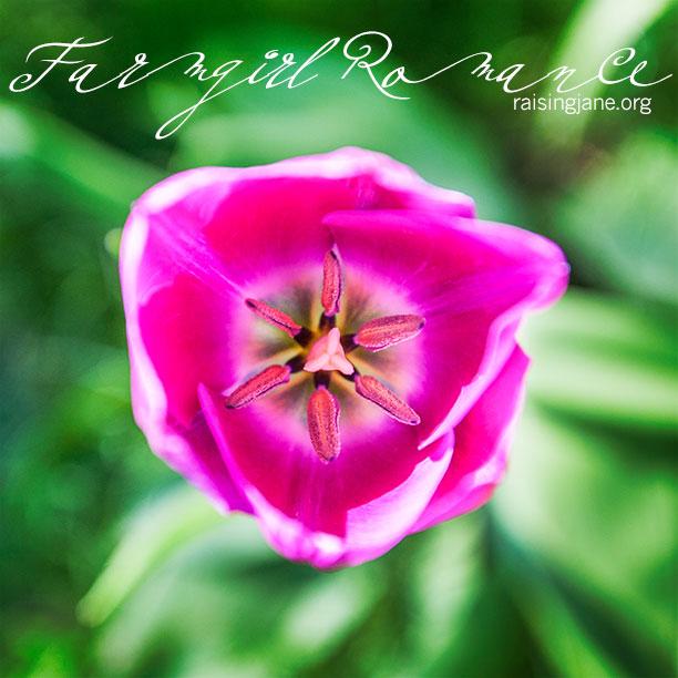 farm-romance_8137