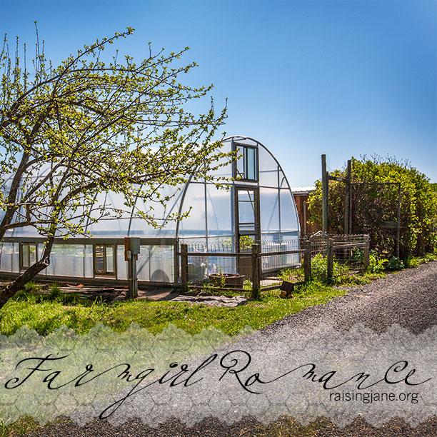 farm-romance_8167