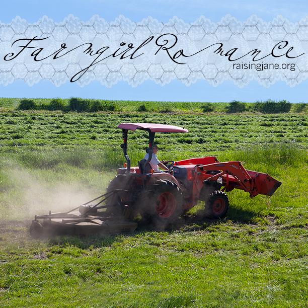 farm-romance_6657