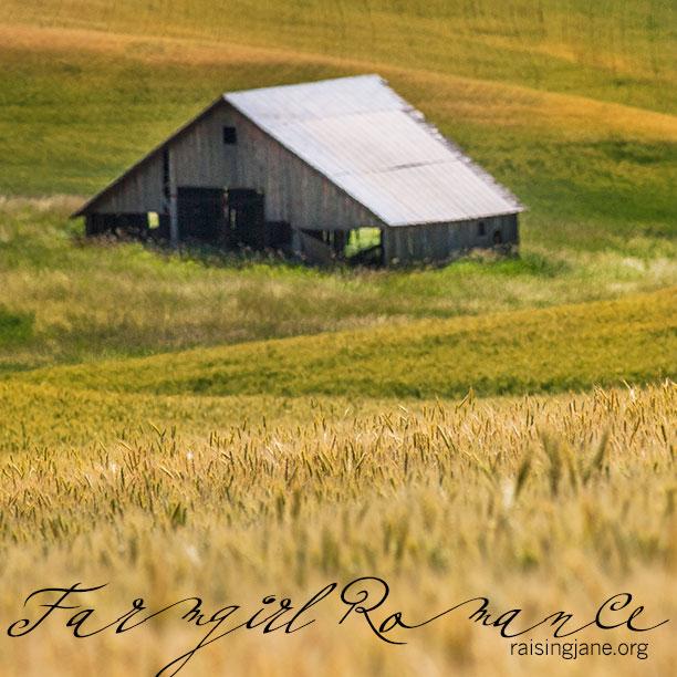 farm-romance-2997