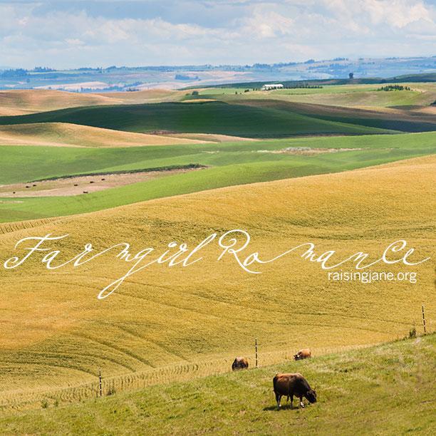 farm-romance_5652