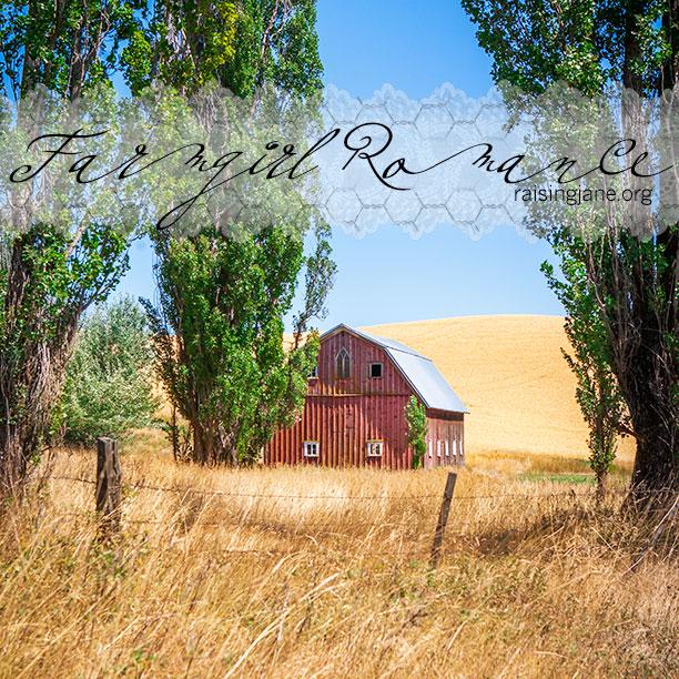 farm-romance-8085