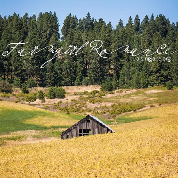 farm-romance-8135
