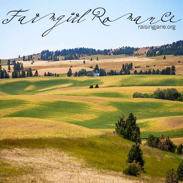 farm-romance-8148