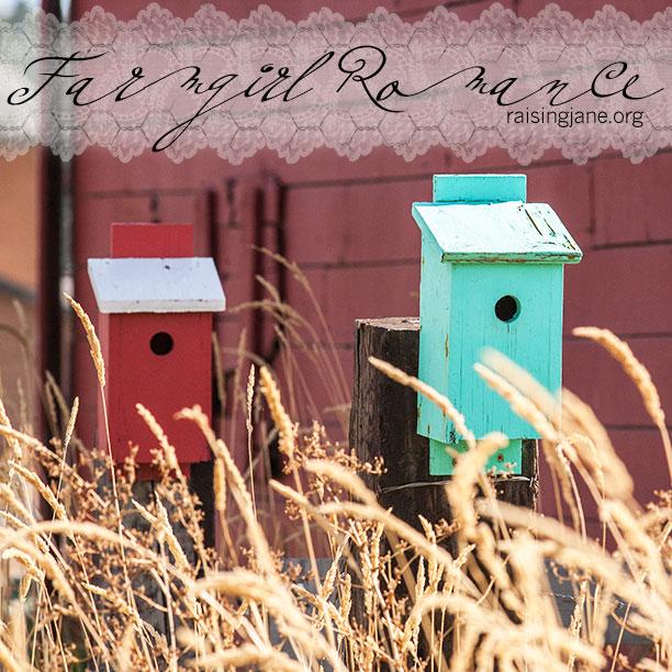 farm-romance_0214
