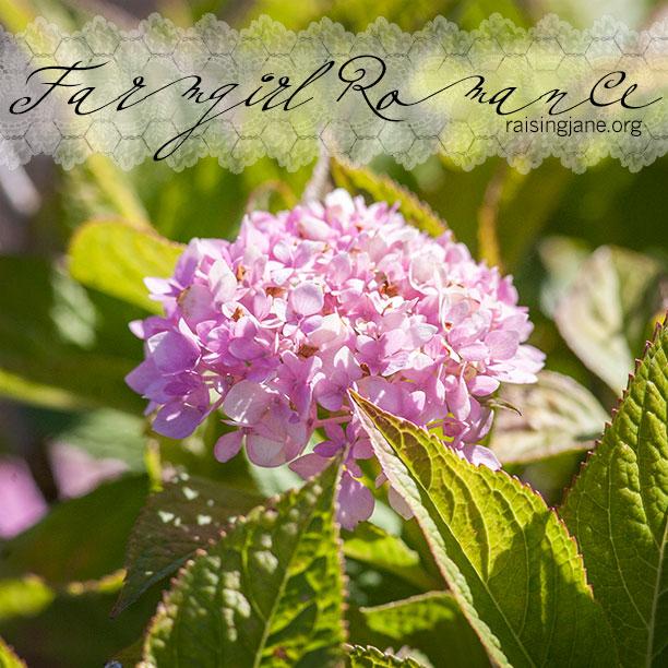 farm-romance_0521