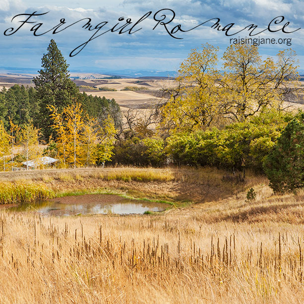 farm-romance_9922