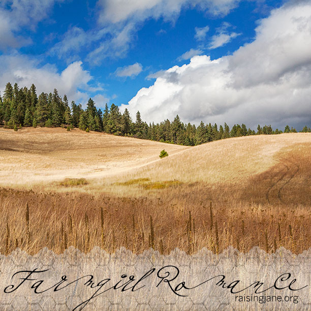 farm-romance_9934