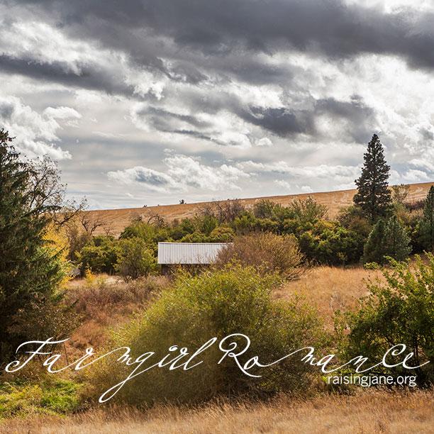 farm-romance_9967