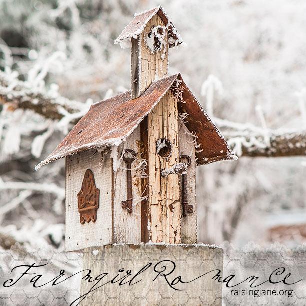 farm-romance-4655-2