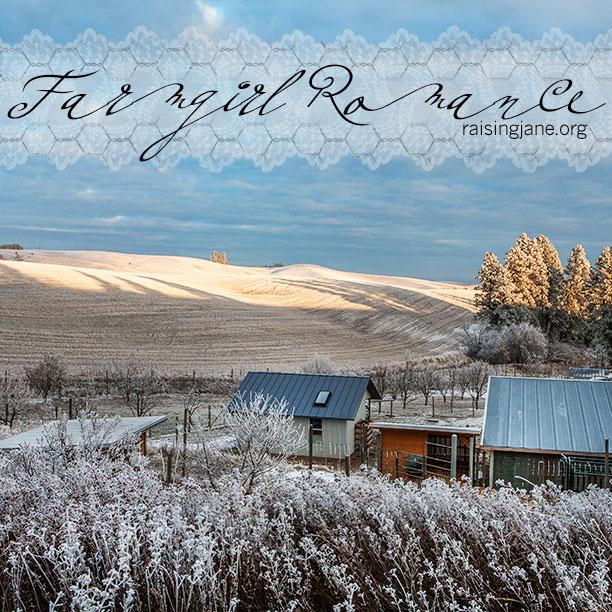 farm-romance-4796-2