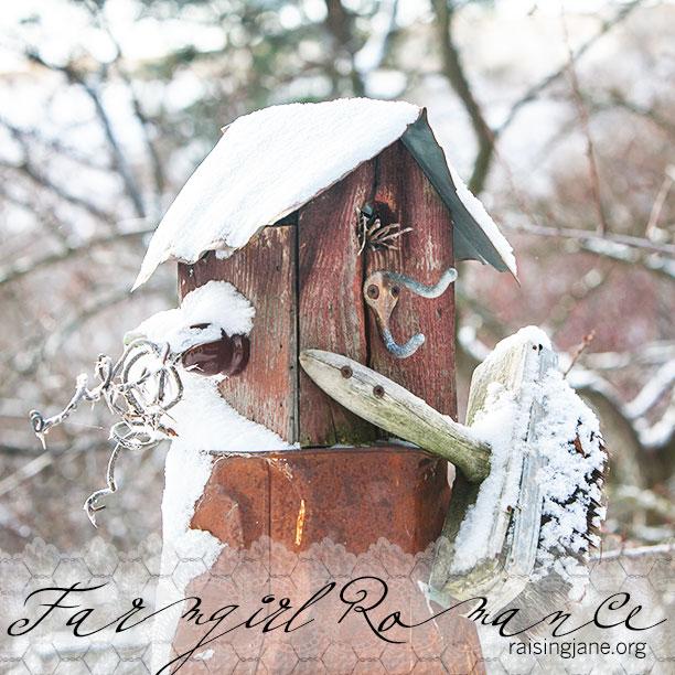 farm-romance_2490