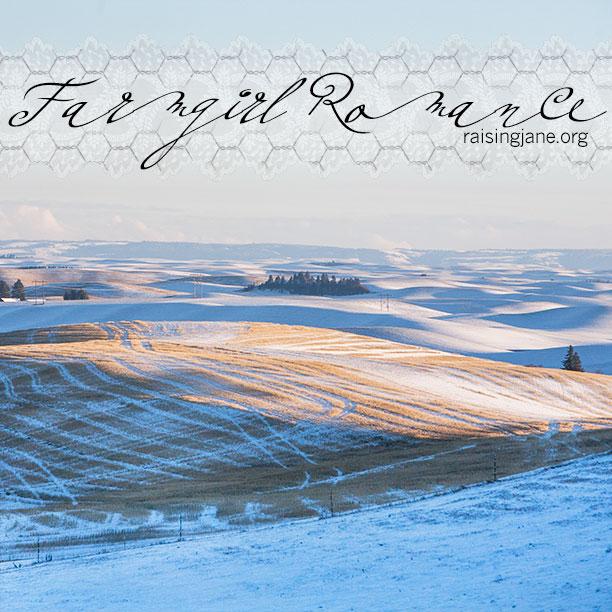 farm-romance_3232