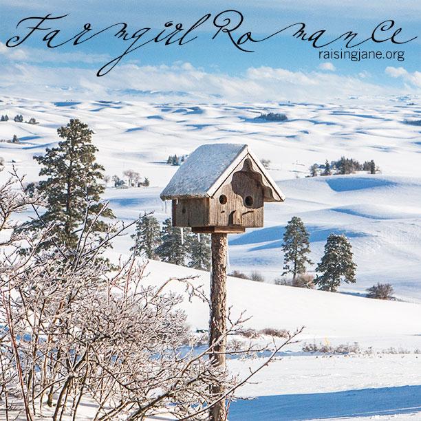 farm-romance_9465