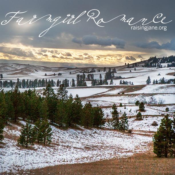 farm-romance_2752