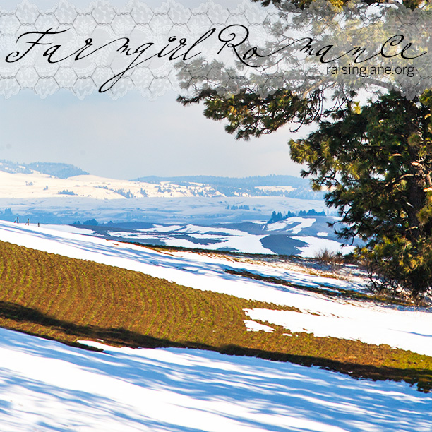 farm-romance_6084