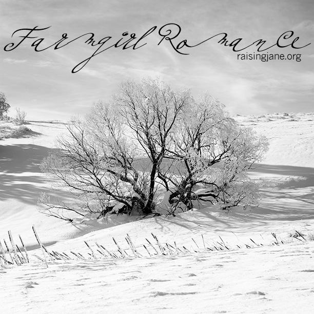 farm-romance_7097
