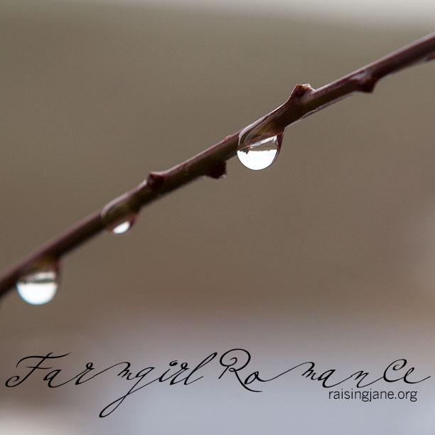 farm-romance-drop_9497