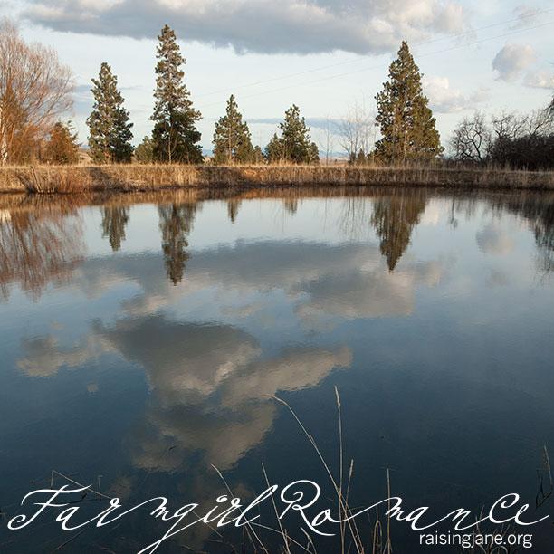farm-romance_1176