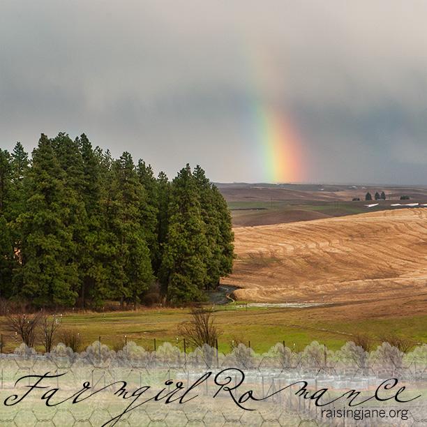 farm-romance_9074
