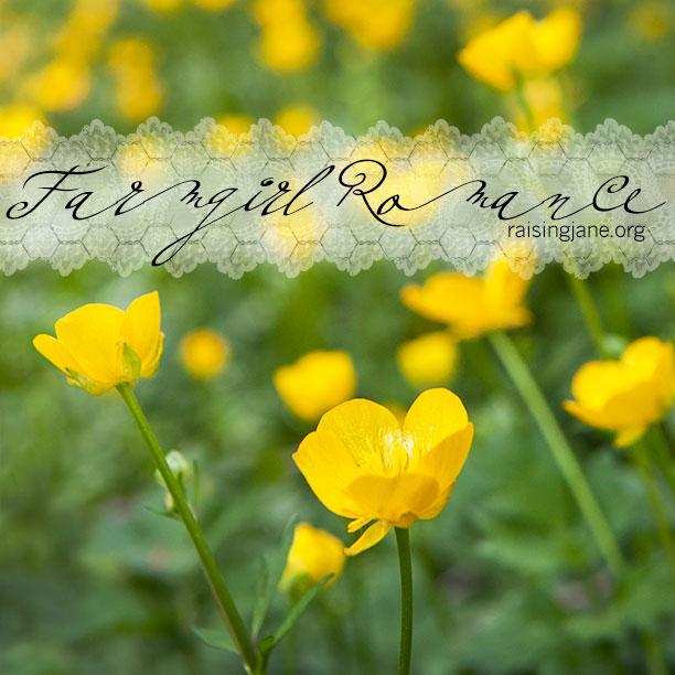 farm-romance_5759