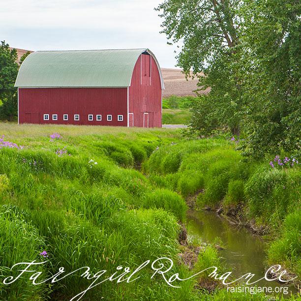farm-romance_6728