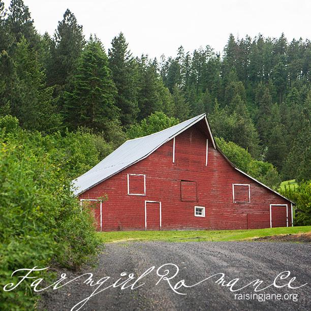 farm-romance_6789