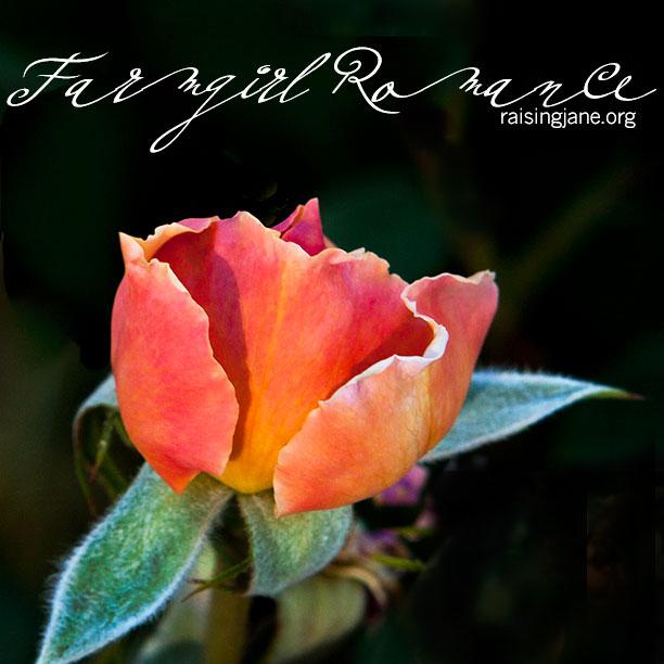 farmgirl-romance_9077