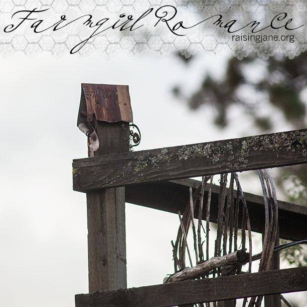 birdhouse_3339