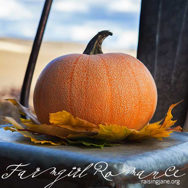 pumkin-chair_4121